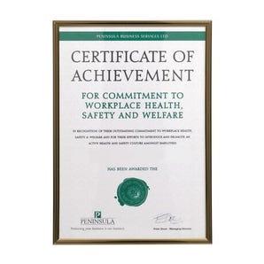 Black/Gold pinstripe A4 certificate frames
