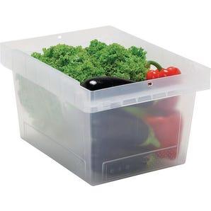Transparent multi-purpose containers